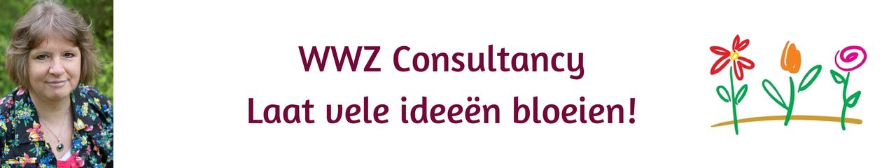 WWZ Consultancy